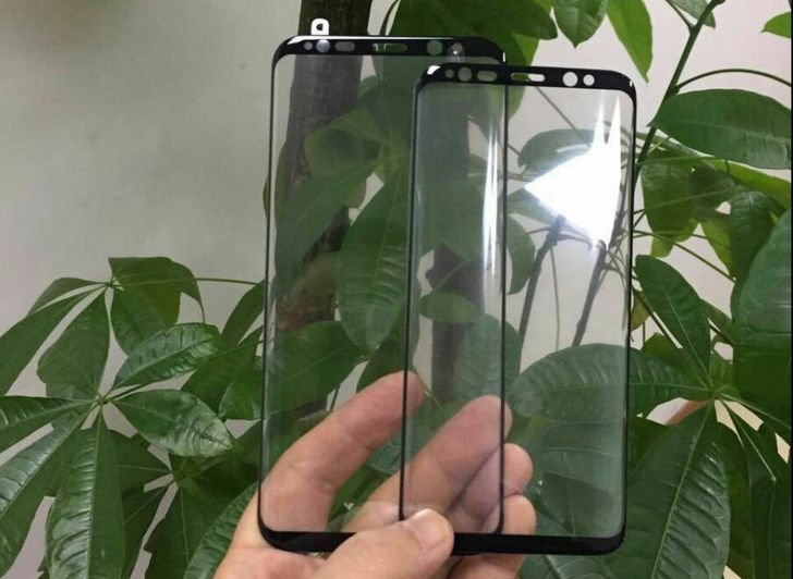 Image of unclear provenance shows Galaxy S8 panels with shockingly minimal bezel, rounded display corners
