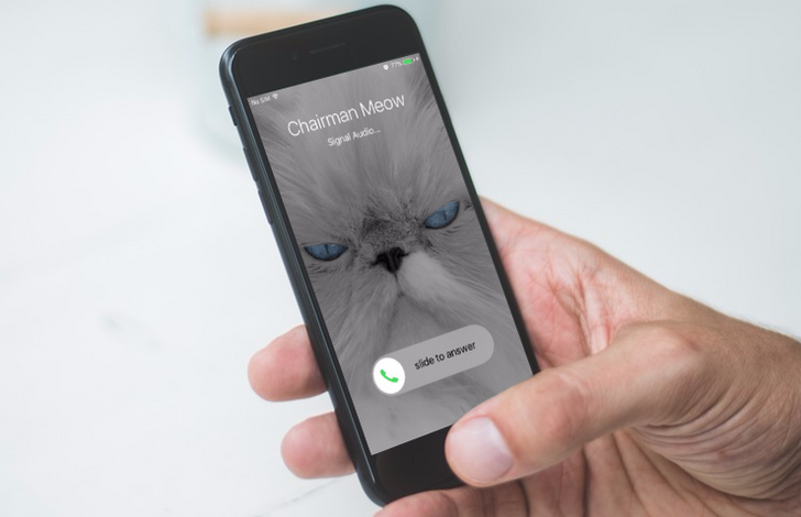 The stable version of the Signal app is receiving beta support for video calls