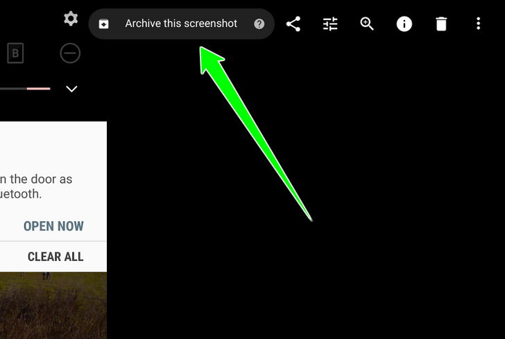 [Update: Receipts, labels, docs, IDs too] Google Photos web handily suggests you archive screenshots