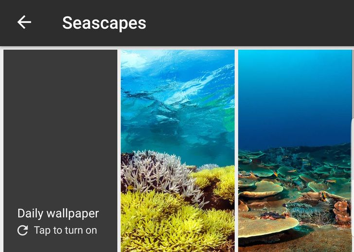 Seascapes category comes to Google Wallpapers on non-Pixel devices, renamed from 'Underwater' on Pixels