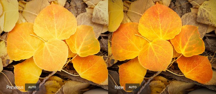 Adobe Lightroom updated with improved auto settings, app shortcuts, and more
