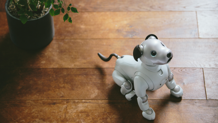 [Update: Pre-orders open] Sony's robotic puppy Aibo is coming to the US in $2,899 'First Litter Edition' bundle