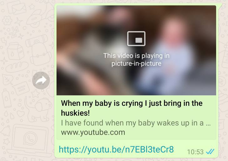 WhatsApp Beta 2.18.301 brings picture-in-picture video playback for YouTube, Facebook, and Instagram
