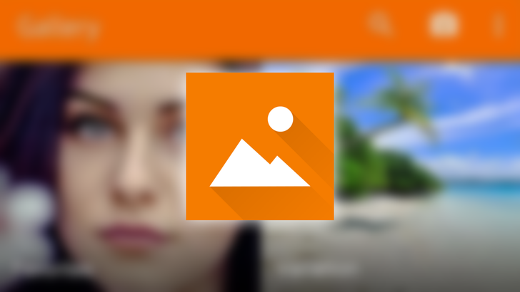 Simple Gallery Pro is a local gallery app that properly handles Pixels' messy portrait folder structure