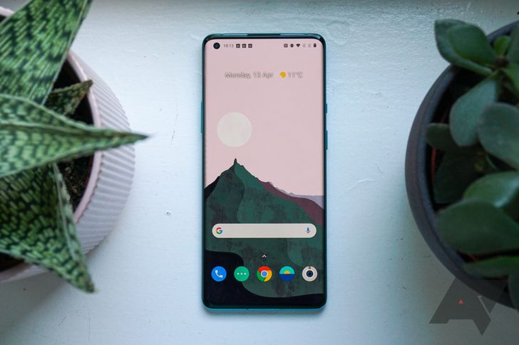 Should you buy a OnePlus 8, or wait for the Pixel 5?