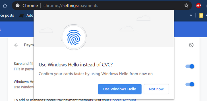 Chrome spotted working with Windows Hello for payment autofill authentication