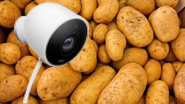 Nest cameras' potato video quality on mobile data seems to be fixed