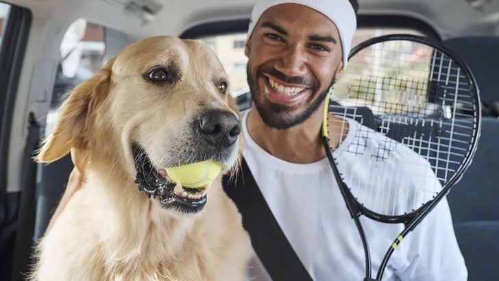 Uber Pets lets your dog take advantage of gig economy workers too