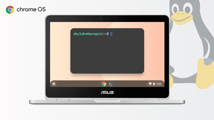 Google waited way too long to bring Linux to older Chromebooks