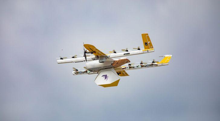 Observa cómo un pájaro ataca a un dron de reparto propiedad de Alphabet